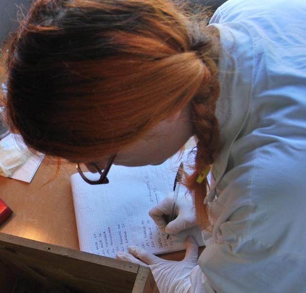 Silvia Gori